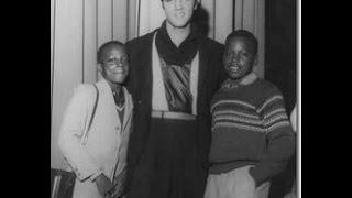 Elvis Presley, the Colorblind Superstar