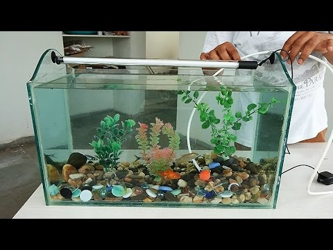 How To Make An Aquarium At Home Do It Yourself Diy