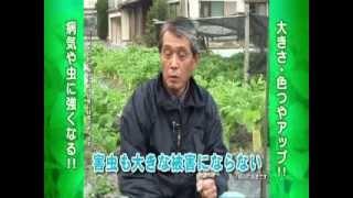 万田アミノアルファ