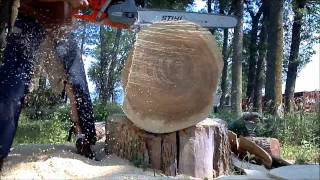 Husqvarna Stihl MS361 vs 562XP vs 372XP vs MS440 chainsaw