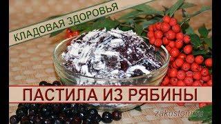 Рецепт домашней пастилы из красной и черноплодной рябины - как приготовить полезный десерт