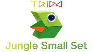 Trido Jungle Small Set - How to build a Fish