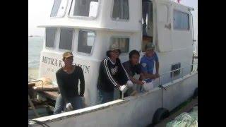 Fish Farm SE Asia