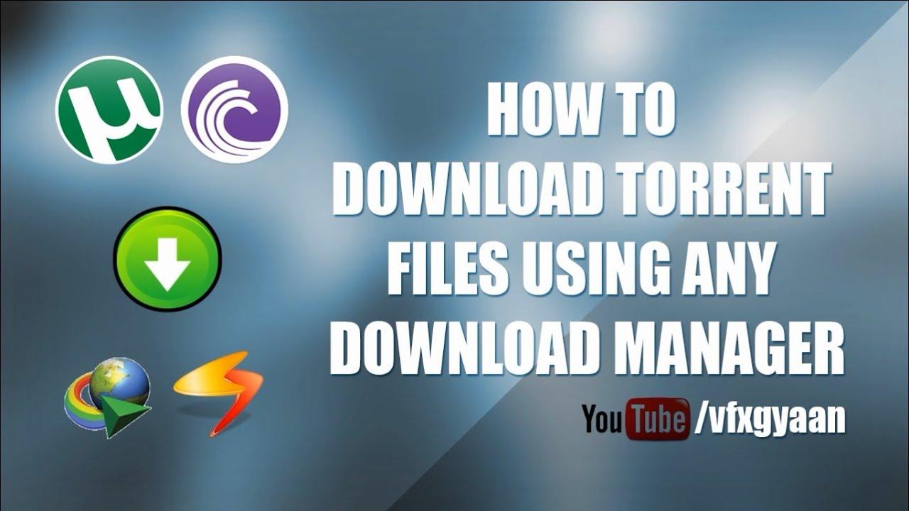 Idm for torrent