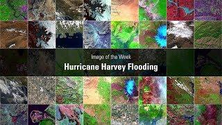 Image of the Week: Hurricane Harvey Flooding