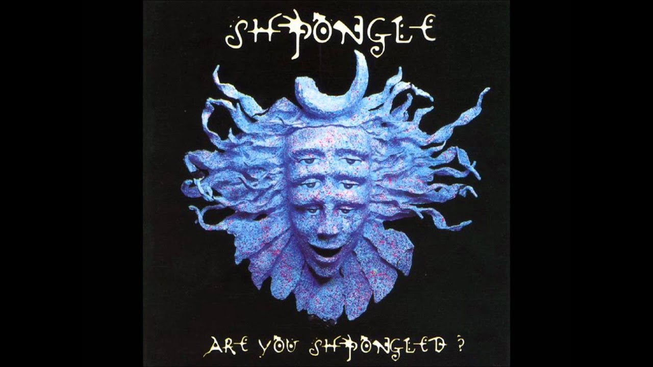 15 Things We Learned From Simon Posford of Shpongle's Reddit