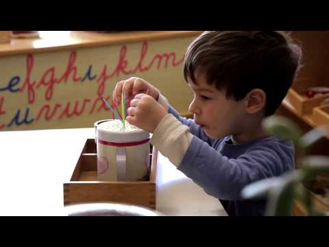 Edinburgh Montessori Arts School