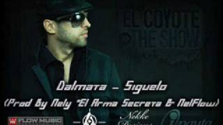 Dalmata-Siguelo(Prod. By Nely El Arma Secreta & NelFlow)