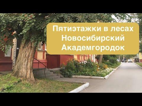 Пятиэтажки в лесах - благоустройство Новосибирского Академгородка