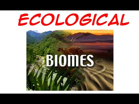 Ecological Biomes
