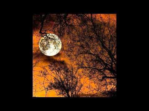 Artist - Troy Breimon / Song - Season of the Witch / Guitar Music Improvisation # 72