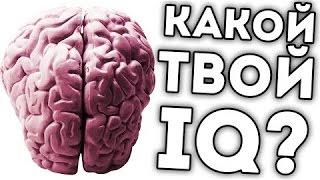 Какой у меня IQ?