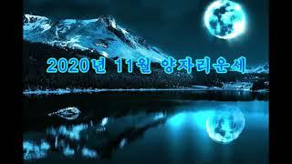 2020년 11월 양자…