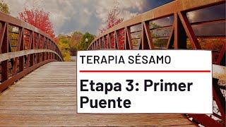 Etapa 3: Primer Puente - Terapia Sésamo