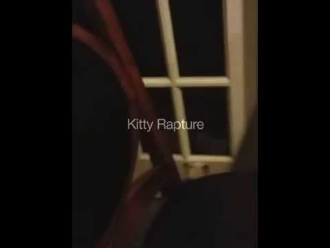 Kitty Rapture