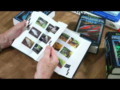 Select Aquatics Presents   Aquarium Books, Behavior and 80 Gallon Hex Repair!