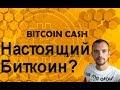 Биткоин Кеш Настоящий Биткоин-BlockExplorer и более