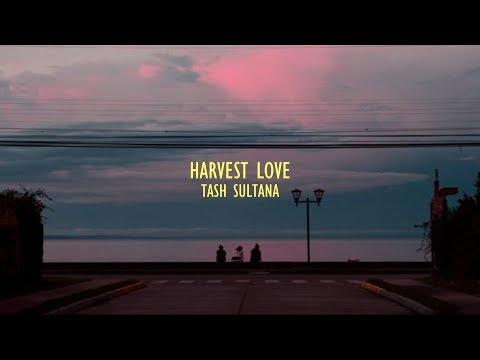 Harvest Love - Tash Sultana || Lyrics