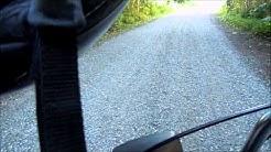 Suzuki pv on-board, ampiainen lentää kypärän sisään ja pistää.