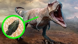 11 Datos impactantes sobre los dinosaurios, que eran desconocidos