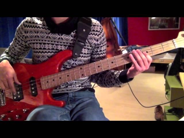 iggy-pop-the-passenger-bass-cover-maarten-plukker