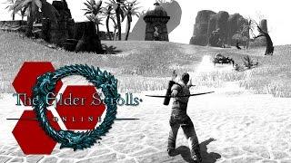 The Elder Scrolls Online - Riffing the Beta - TheHiveLeader