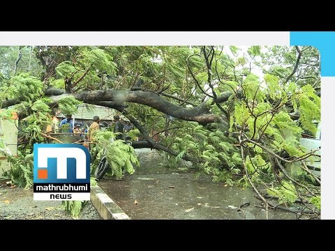 Strong Winds Lash Thiruvananthapuram| Mathrubhumi News