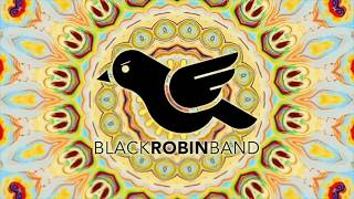 Black Robin Band - Covering Sultans Of Swing
