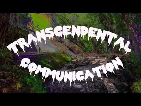 Dylan Hansen - Transcendental Communication (prod. Elijah Ali)