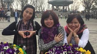 2017 (남산) Vietnam friends 남산 타…