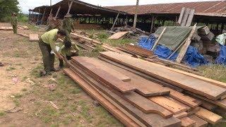 Tin Tức 24h Mới Nhất : Phát hiện xe tải chở hơn 40m3 gỗ không rõ nguồn gốc