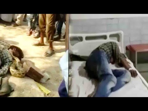 Snake charmer attacked by his own &39;Python&39; people kept on making   Oneindia News