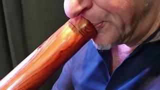 DIDGERIDOO: Mogano PRO 147cm incluyendo bolsa didgeridoo de nylon video
