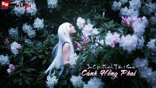 Cánh Hồng Phai - Jon C ft. Khánh Tiến & Sunz [ Video Lyrics ]