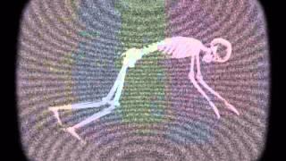 Slow Motion Mixed & Selected Sandro Lunesu Dj & VisuaL ART Part.1 2013