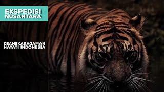 Download Mp3 Keanekaragaman Hayati Indonesia