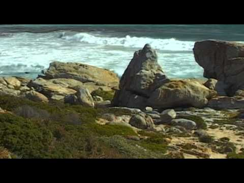 Cape Peninsula Vacation Travel Video Guide