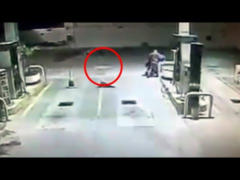 Randy, el perro que frustró un asalto en una gasolinera de Tamaulipas