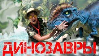 Голубицкая 2019 - Шоу динозавров
