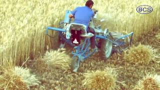 BCS 3 Wheel Reaper Binder Wheat Harvesting Solution
