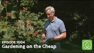Growing a Greener World Episode 1004: Gardening on the Cheap