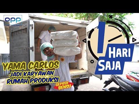 1 HARI SAJA - YAMA CARLOS