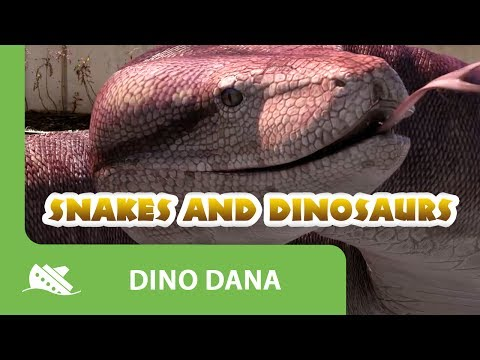 Dino Dana : Snakes and Dinosaurs - Episode Promo