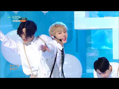 뮤직뱅크 Music Bank - BIRD - HA SUNG WOON(하성운).20190301