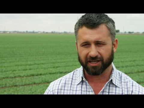 Josh Roberts, Director of Organic Ag Operations