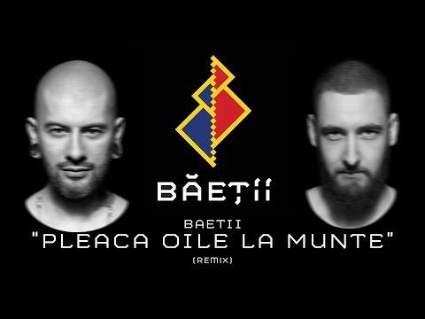 Baetii - Pleaca oile la munte (Remix)🇷🇴
