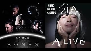free mp3 songs download - nightcore bones equinox lyrics esc
