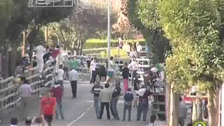 Cuarto Encierro de Medina del Campo - San Antolín 2014
