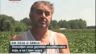 Istina o GM soji u Srbiji uvozi se, iako je to zabranjeno zakonom!-B92.