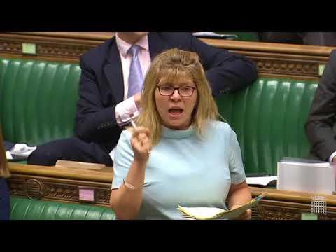 Maria Caulfield MP talking on Free School Meals